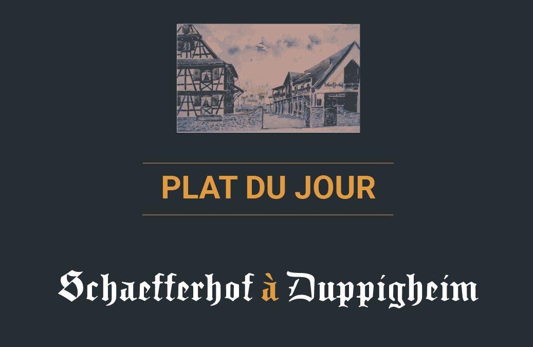 Plat du jour au restaurant Schaefferhof à Duppigheim