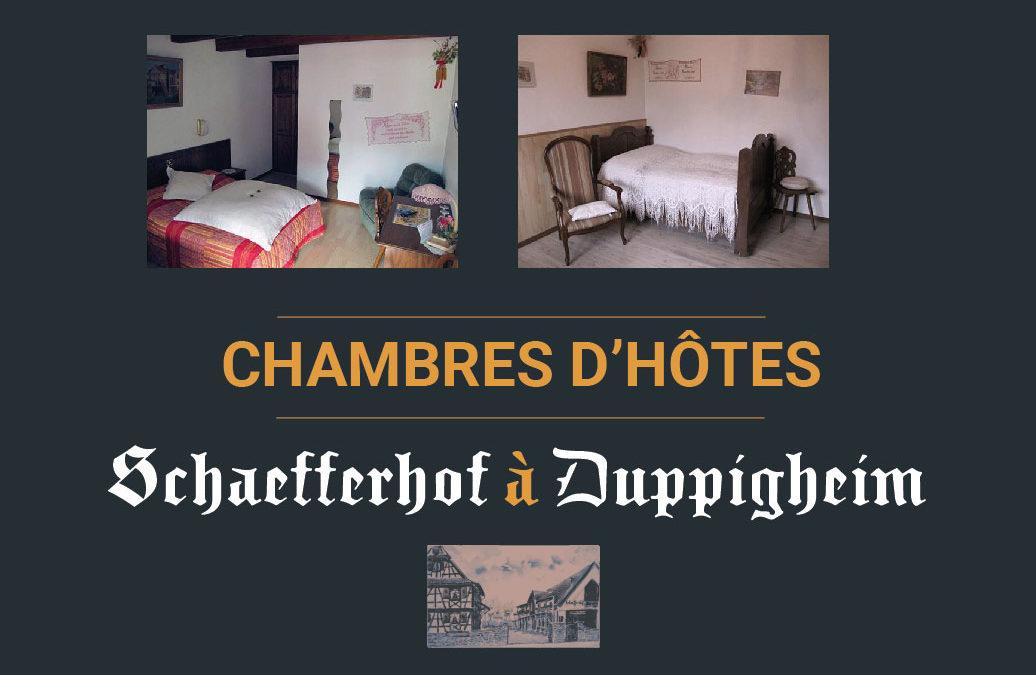 Chambre d'hôtes à Duppigheim 67120